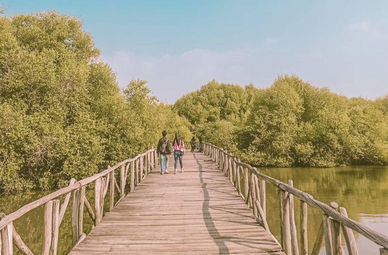 https: img.okezone.com content 2020 09 07 408 2273725 mengunjungi-wisata-alam-di-jakarta-tak-kalah-dari-sungai-amazon-ssdJ2ESNmS.jpg