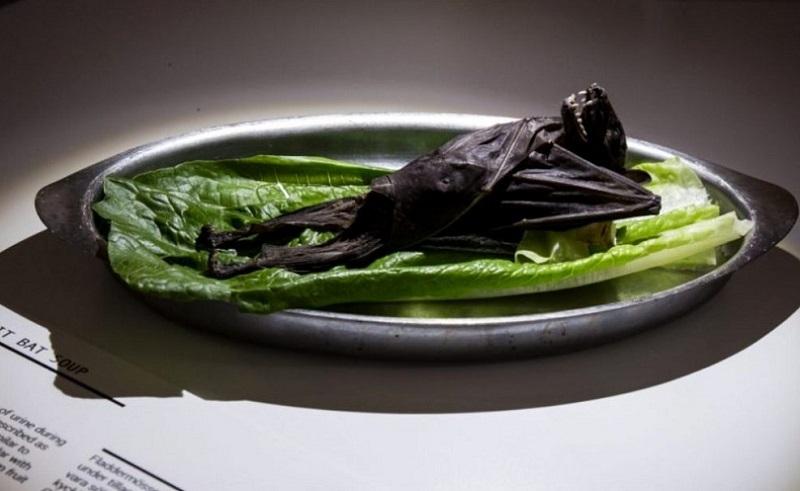 https: img.okezone.com content 2020 09 08 298 2274498 disgusting-food-museum-perlihatkan-80-makanan-paling-menjijikkan-salah-satunya-favorit-orang-indonesia-yovQmuNbna.jpg