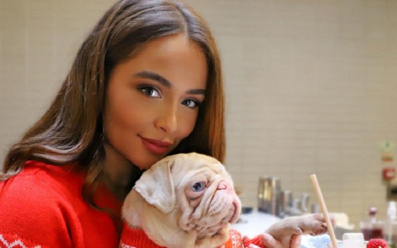 https: img.okezone.com content 2020 09 08 612 2274374 mengenal-milkshake-anjing-pug-langka-berwarna-merah-muda-au2cteVN5H.jpg