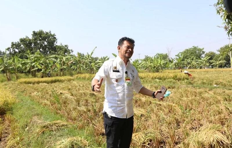 https: img.okezone.com content 2020 09 14 320 2277557 ketua-komisi-iv-dpr-cecar-mentan-soal-proyek-food-estate-di-kalteng-GhaSy4kCJm.jpg