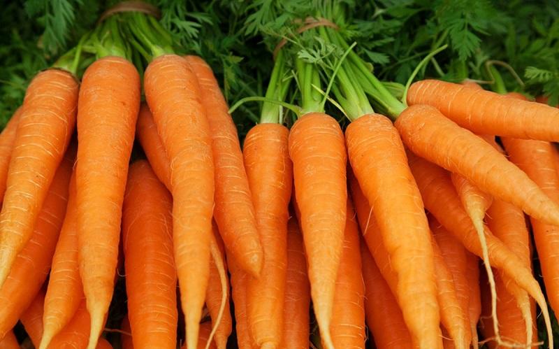 https: img.okezone.com content 2020 09 17 298 2279449 5-manfaat-wortel-yang-perlu-kamu-tahu-simak-yuk-gquASgDvRP.jpg