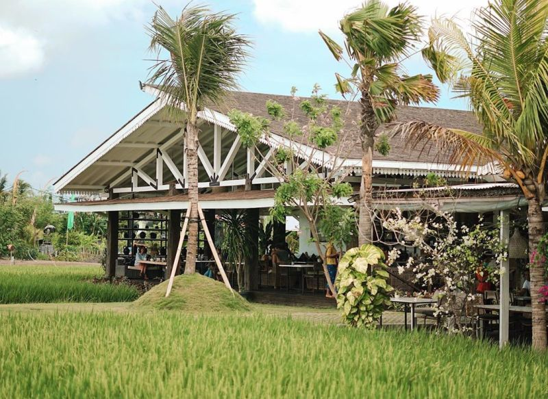 https: img.okezone.com content 2020 09 21 301 2281065 4-restoran-sawah-khas-bali-langganan-artis-sampai-presiden-jokowi-88dcAoJ7m4.jpg