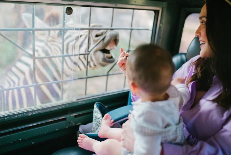 https: img.okezone.com content 2020 09 23 549 2282586 pertama-kali-ke-bali-safari-park-gemasnya-baby-claire-dan-shandy-aulia-uxXRP4k70z.jpg