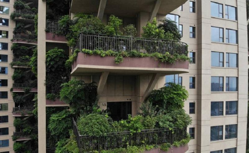 https: img.okezone.com content 2020 09 27 612 2284324 niatnya-hunian-ramah-lingkungan-perumahan-ini-malah-mirip-film-kiamat-lviZsuucZj.jpg