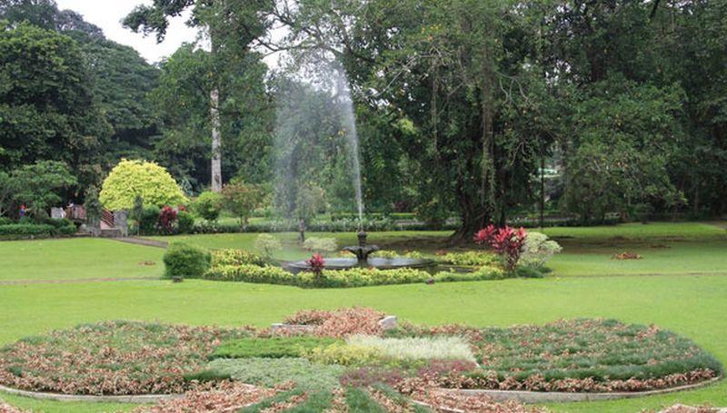 Kebun Raya Bogor Parkir Mobil