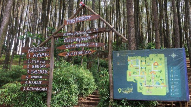 https: img.okezone.com content 2020 10 01 408 2287000 sejuknya-hutan-pinus-pengger-panoramanya-keren-eRLmR10c7H.jpg