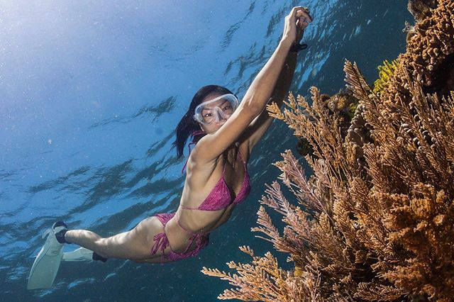 https: img.okezone.com content 2020 10 03 408 2287803 5-spot-diving-terbaik-di-sumbawa-bikin-model-kelly-tandiono-jatuh-cinta-14RrN3Q1W2.jpg