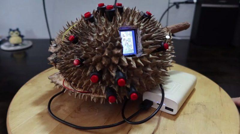 https: img.okezone.com content 2020 10 06 16 2289184 pelajar-ini-ciptakan-gameboy-dengan-casing-durian-ini-wujudnya-ejfkkeHLAP.jpg
