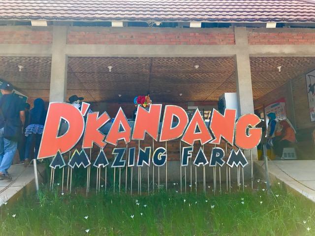https: img.okezone.com content 2020 10 07 408 2290004 d-kandang-amazing-farm-wisata-edukasi-di-depok-Y3BQ5aduiS.jpg