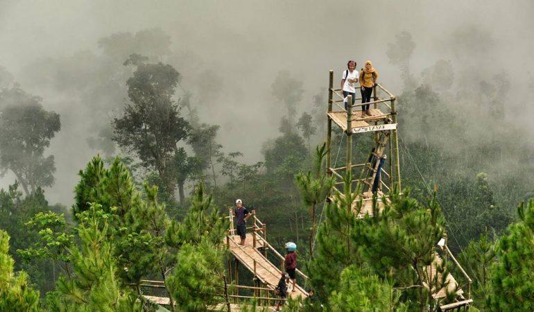 https: img.okezone.com content 2020 10 08 408 2290437 menikmati-wisata-hutan-pinus-berselimut-kabut-di-watu-layah-temanggung-N51o2XuKpb.jpg