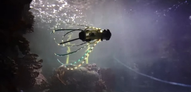 https: img.okezone.com content 2020 10 11 16 2291738 peneliti-buat-robot-cumi-cumi-yang-ramah-kehidupan-laut-4cgilCaQvF.jpg