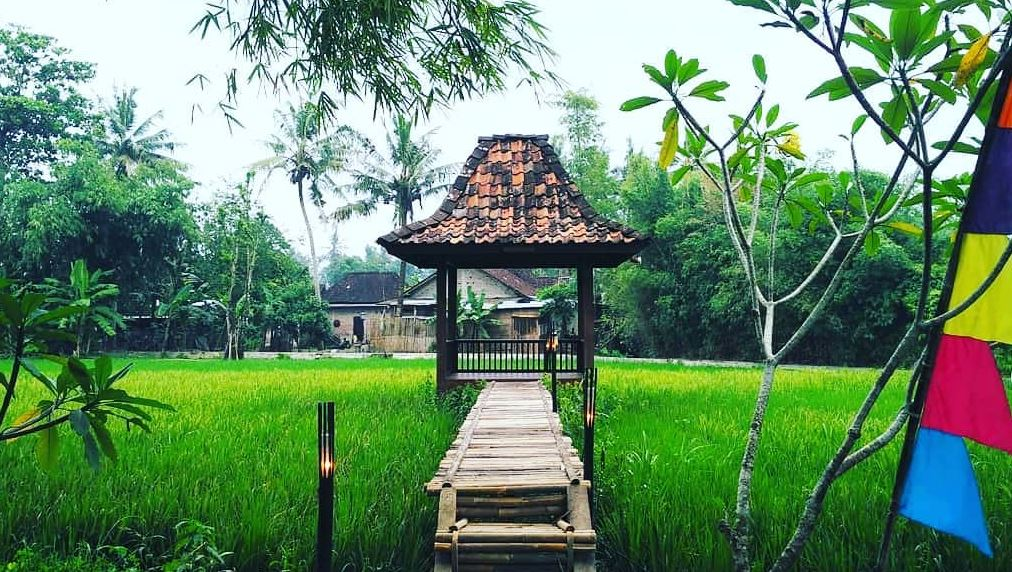 https: img.okezone.com content 2020 10 14 406 2293297 desa-wisata-pionir-kebangkitan-pariwisata-yogyakarta-9Eg3vDEViX.JPG