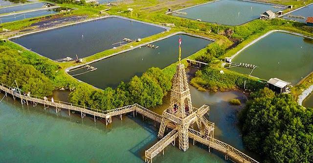 https: img.okezone.com content 2020 10 14 408 2293456 deretan-wisata-hutan-mangrove-di-pulau-jawa-cocok-untuk-liburan-keluarga-tHDpnFLeEX.jpg
