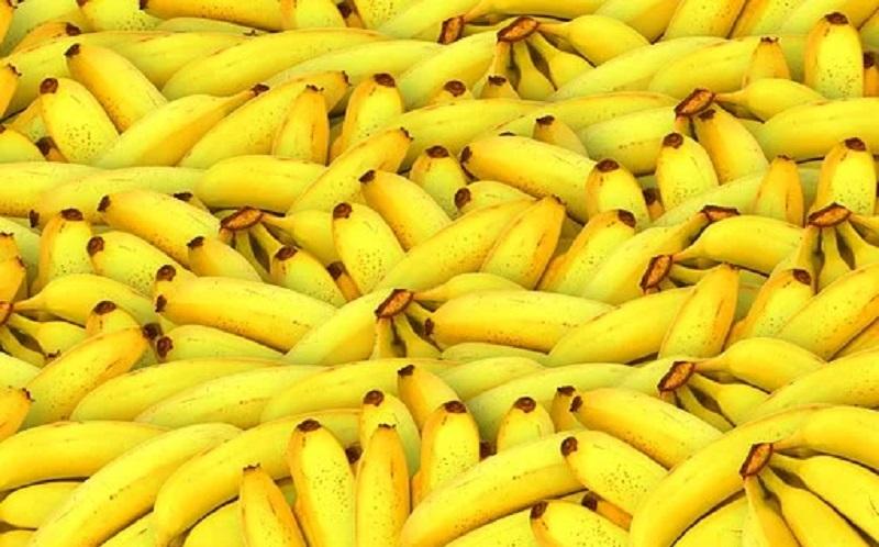 https: img.okezone.com content 2020 10 14 481 2293373 kaya-nutrisi-ini-khasiat-mengonsumsi-buah-pisang-PMqgYuCwEB.jpg