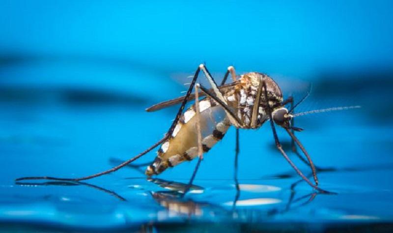 https: img.okezone.com content 2020 10 14 620 2293462 selain-covid-19-jangan-abaikan-4-penyakit-ini-selama-pandemi-uLVi0x2xHs.jpg