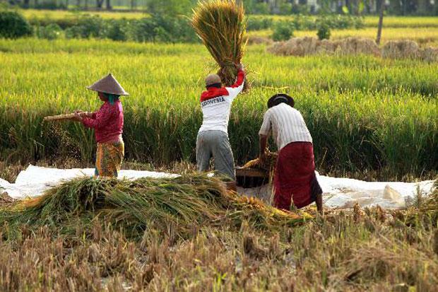 https: img.okezone.com content 2020 10 16 320 2294524 hari-pangan-sedunia-ekspor-pertanian-ri-rp258-triliun-QrmtkQQVLd.jpg
