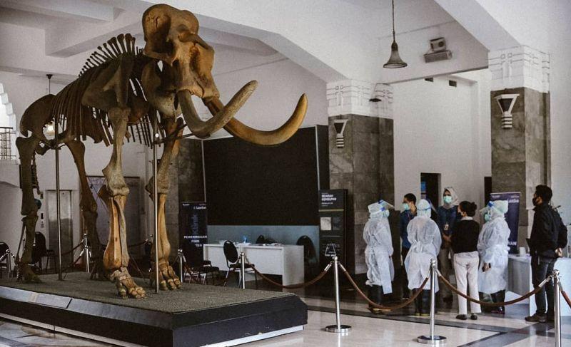 https: img.okezone.com content 2020 10 23 408 2298279 museum-geologi-tempat-mengenal-fosil-hewan-purba-favorit-milenial-dWkdr2o4gP.jpg