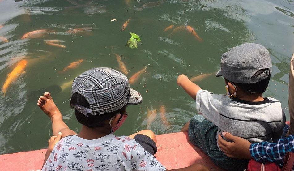 https: img.okezone.com content 2020 10 25 408 2299117 3-destinasi-wisata-kampung-ikan-di-pulau-jawa-qj6G1ytOkf.JPG