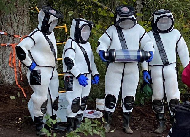 https: img.okezone.com content 2020 10 26 16 2299615 pemburu-serangga-singkirkan-puluhan-lebah-pembunuh-dari-sarangnya-T3hqvGXOuz.jpg