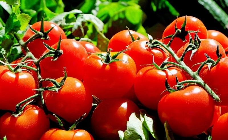 https: img.okezone.com content 2020 10 26 611 2299613 tidak-hanya-untuk-dimakan-6-sayuran-ini-juga-bisa-jadi-bahan-perawatan-wajah-ZZLHSZ1sWT.jpg