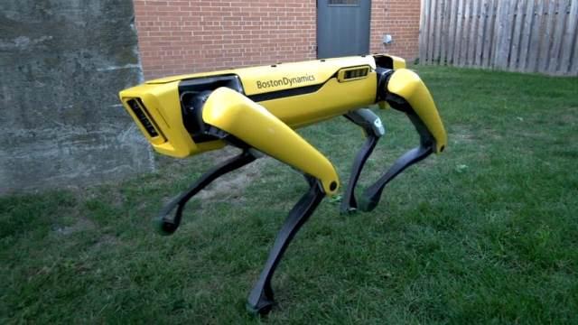https: img.okezone.com content 2020 10 29 16 2301169 peneliti-kerahkan-robot-anjing-untuk-deteksi-radiasi-nuklir-di-chernobyl-ecwQknuEwz.jpg