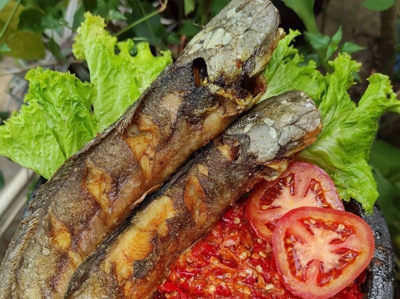Resep Ikan Lele Goreng Makan Siang Makin Lahap Okezone Lifestyle