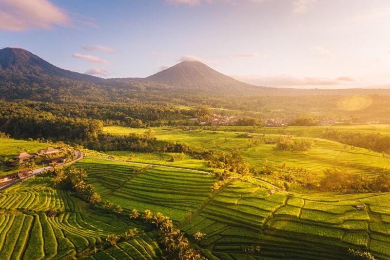 https: img.okezone.com content 2020 11 06 25 2305448 ecotourism-jatiluwih-nan-elok-dan-menjanjikan-ketenangan-wZjyvJTYuT.jpg