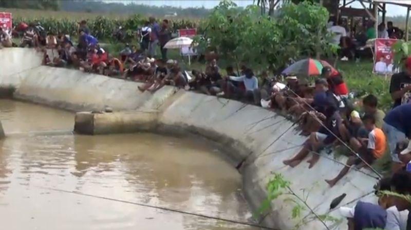 https: img.okezone.com content 2020 11 08 519 2306087 perebutkan-lele-1-5-ton-ribuan-warga-mancing-di-sungai-sepanjang-3-kilometer-qUZNX87qye.jpg
