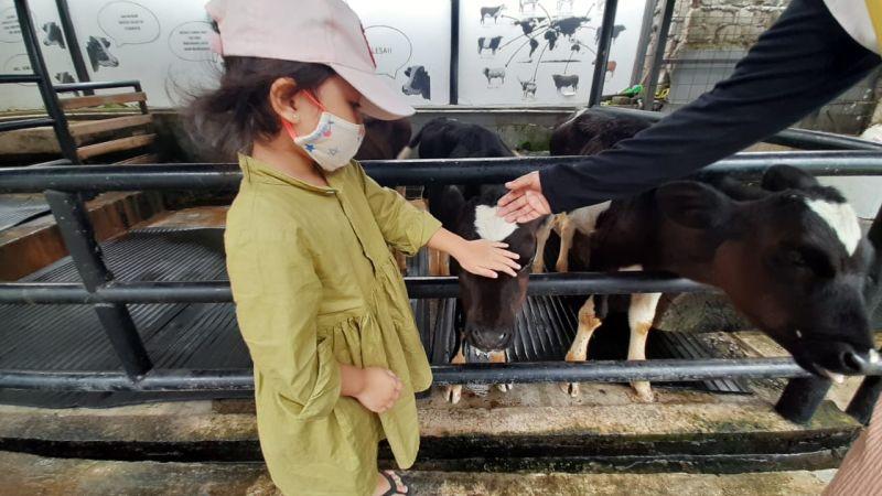https: img.okezone.com content 2020 11 09 408 2306529 5-wisata-keluarga-di-bandung-dari-mal-hingga-peternakan-hewan-YW6mhhB3F6.jpg