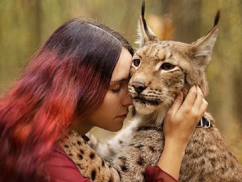 https: img.okezone.com content 2020 11 09 612 2306887 cat-lovers-perempuan-ini-nekat-adopsi-2-ekor-lynx-ke-apartemennya-fjlrgWPxJW.jpg