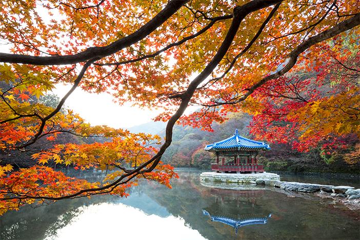 https: img.okezone.com content 2020 11 09 620 2306661 korea-selatan-promosikan-wisata-wellness-DBFlCmo0b7.jpg