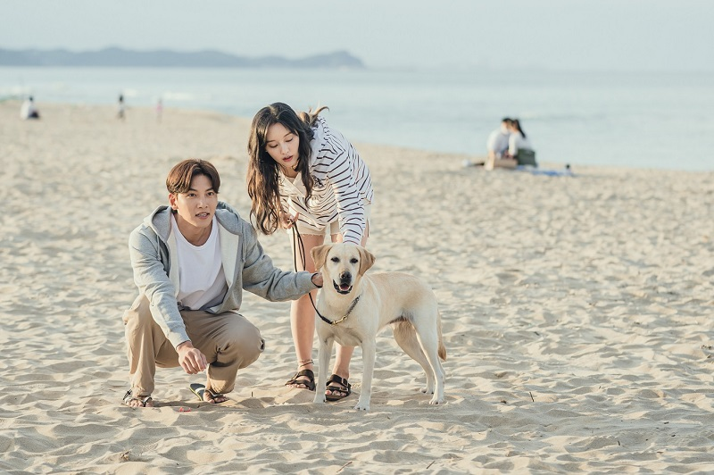 https: img.okezone.com content 2020 11 12 598 2308541 ji-chang-wook-kim-ji-won-dimabuk-cinta-di-my-lovable-camera-thief-ELK7M5E7Ns.jpg
