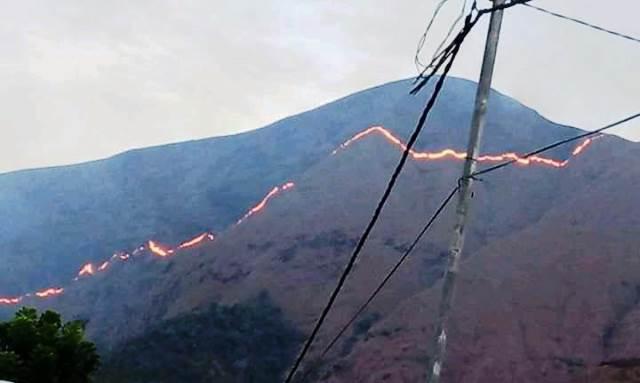 https: img.okezone.com content 2020 11 14 340 2309531 bukit-anak-dara-lereng-gunung-rinjani-terbakar-bvKuh3tMsM.jpg