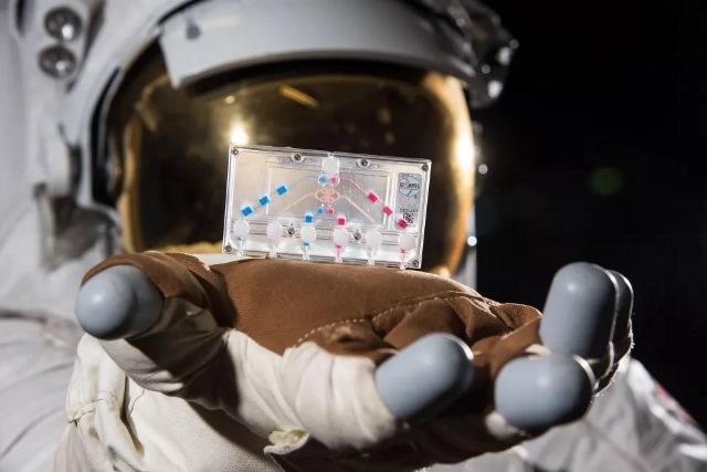 https: img.okezone.com content 2020 11 17 16 2310831 7-eksperimen-unik-di-balik-misi-crew-1-ke-stasiun-luar-angkasa-iSO3mpitEP.jpg