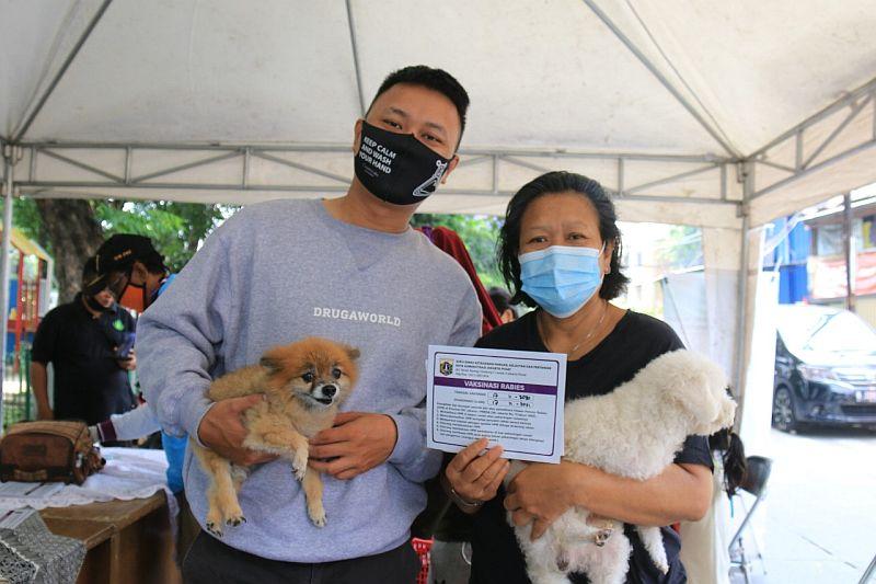 https: img.okezone.com content 2020 11 18 338 2311524 5-087-hewan-di-jakpus-sudah-divaksinasi-anti-rabies-ObYVEYvY1I.jpg