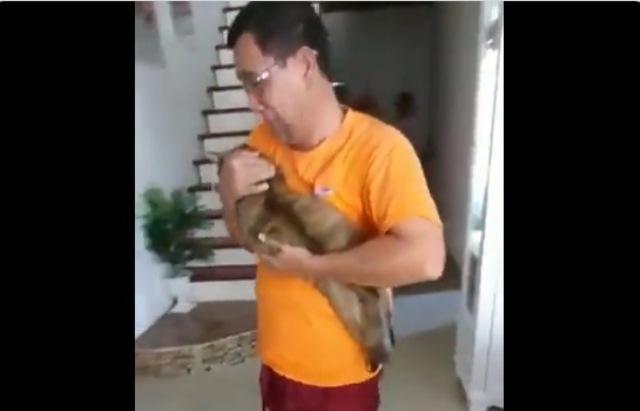 https: img.okezone.com content 2020 11 19 612 2312112 viral-pria-menangis-kubur-kucing-kesayangan-netizen-ramai-ramai-bersedih-qjuSJ3jgzL.jpg
