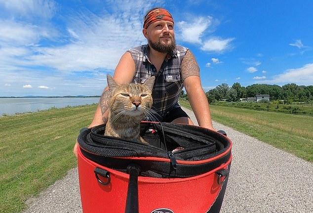https: img.okezone.com content 2020 11 20 18 2312927 viral-di-media-sosial-berkat-kucing-pOE14CDCCE.jpg