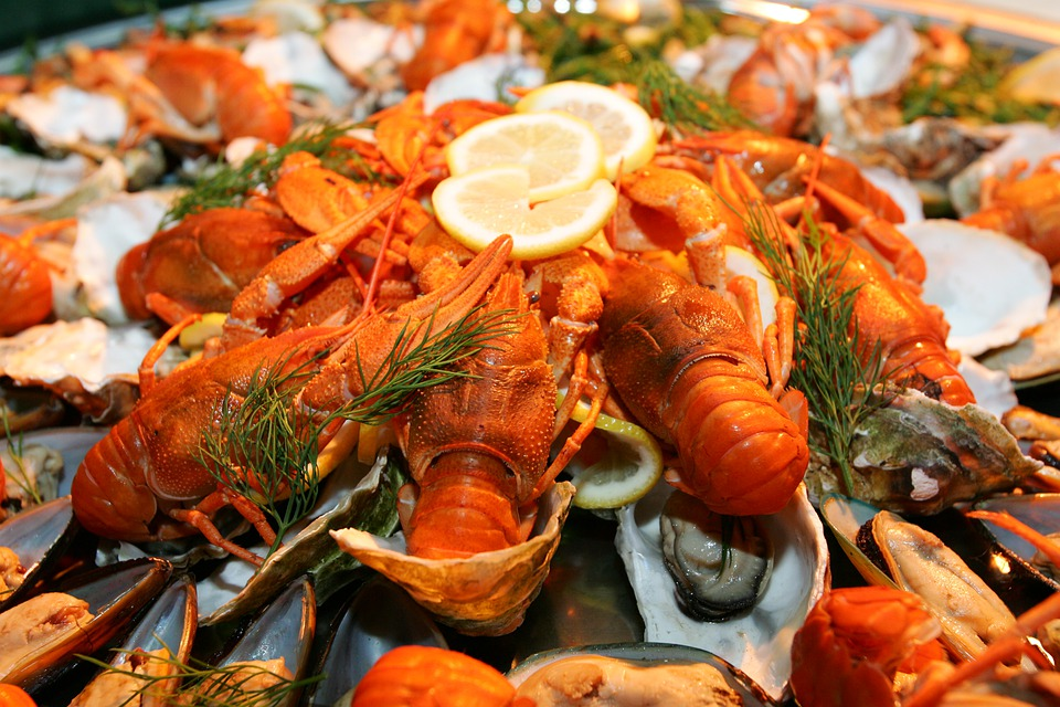 https: img.okezone.com content 2020 11 25 298 2315868 ini-alasan-kenapa-lobster-harganya-mahal-banget-EGfG5hOQ1w.jpg