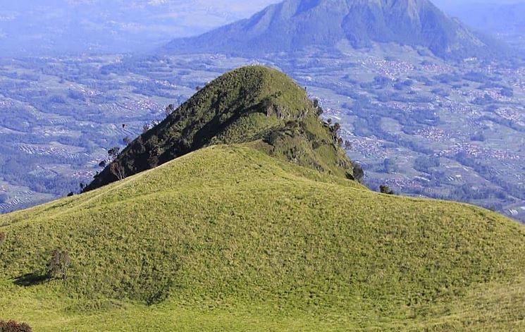https: img.okezone.com content 2020 11 26 408 2316564 5-sabana-eksotis-di-pegunungan-indonesia-nomor-4-destinasi-favorit-turis-yn4xQKvOd4.JPG
