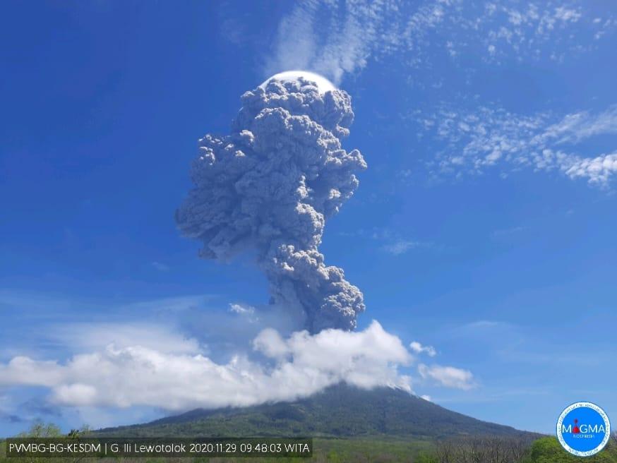 https: img.okezone.com content 2020 11 29 340 2318184 gunung-ile-lewotolok-kembali-erupsi-warga-radius-2-km-diminta-tak-lakukan-aktivitas-OXt6CzOUyg.jpeg