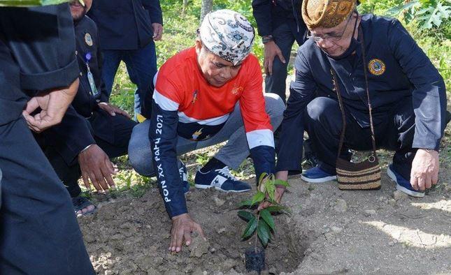 https: img.okezone.com content 2020 11 29 406 2318237 pemkab-keerom-papua-kembangkan-agrowisata-durian-0eKQjF37Fp.JPG