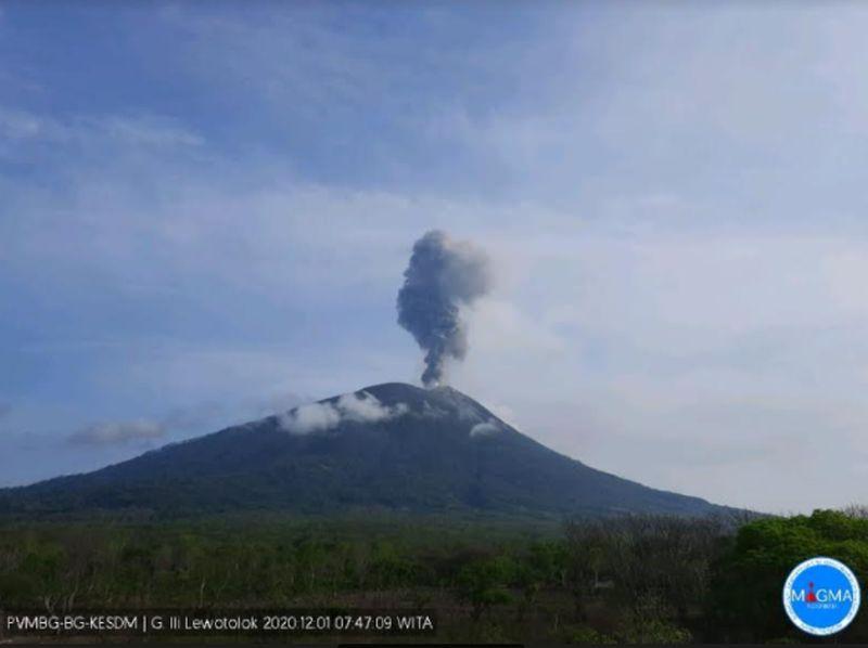 https: img.okezone.com content 2020 12 01 340 2319252 erupsi-gunung-ile-lewotolok-semburkan-abu-vulkanik-setinggi-1-500-meter-IA0gGryJOv.jpg