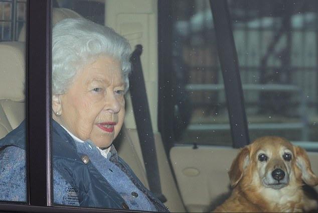 https: img.okezone.com content 2020 12 04 18 2321755 ratu-elizabeth-ii-berduka-anjing-piaraan-kesayangannya-mati-W88uPDHyih.jpg