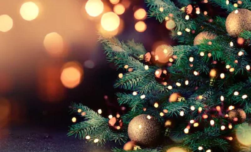 https: img.okezone.com content 2020 12 04 455 2321542 rezeki-nomplok-penjualan-pohon-natal-naik-di-tengah-corona-pZcaM6yefM.jpg