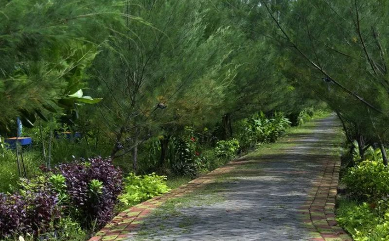 https: img.okezone.com content 2020 12 05 406 2322159 surabaya-surga-hutan-kota-bu-risma-libur-akhir-tahun-jangan-ke-luar-negeri-j7DwlK7eyf.jpg