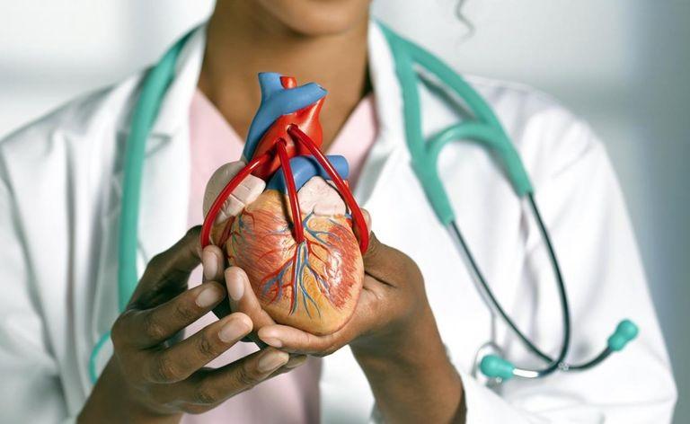 https: img.okezone.com content 2020 12 09 481 2324648 melisha-sidabutar-alami-pembengkakan-jantung-ini-5-cara-mencegahnya-4qt59d8Y2z.jpg