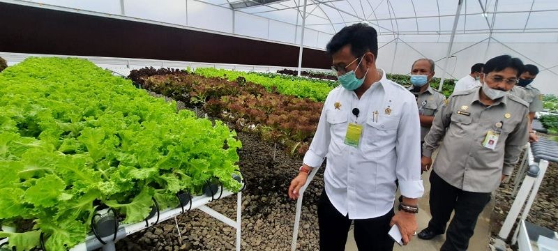 https: img.okezone.com content 2020 12 15 320 2327761 ubah-peradaban-pertanian-mentan-buat-smartfren-green-house-CoviE4LSaH.jpg