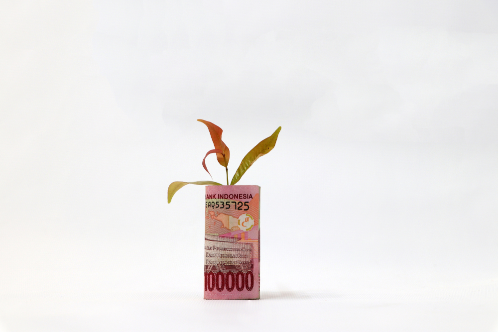 https: img.okezone.com content 2020 12 15 622 2328080 resolusi-keuangan-2021-saat-ump-tak-naik-hingga-gejolak-ekonomi-HfeecY64Ns.jpeg