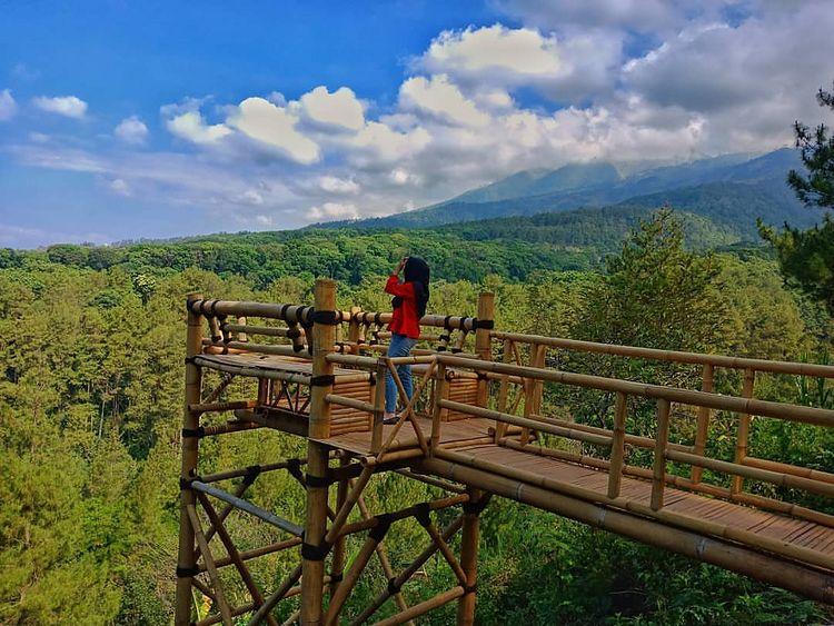 https: img.okezone.com content 2020 12 18 408 2330153 negeri-bambu-wisata-instagramable-di-pasuruan-favorit-milenial-EjdyjXe3Ud.jpg