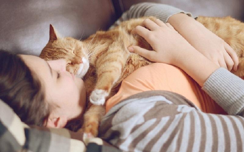 https: img.okezone.com content 2020 12 18 612 2330274 6-manfaat-memiliki-hewan-peliharaan-salah-satunya-mengurangi-depresi-pvAz9H3FUR.jpg